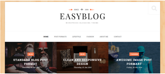 Easyblog Responsive WordPress Theme
